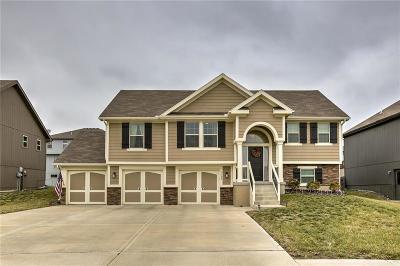 Kansas City Single Family Home For Sale: 7502 NE 109th Street