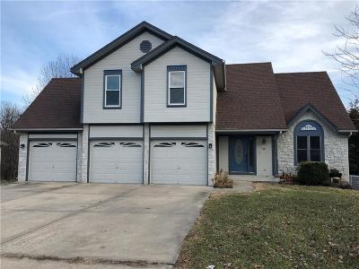 Smithville Single Family Home For Sale: 501 Amesbury Drive