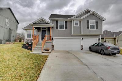 Leavenworth County Single Family Home For Sale: 14204 Amanda Lane