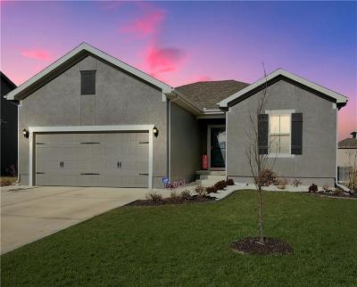 Blue Springs Single Family Home For Sale: 921 SE Scarlet Court