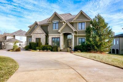 Johnson-KS County Single Family Home For Sale: 20416 W 92nd Street