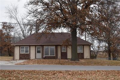 Single Family Home For Sale: 310 E South Street