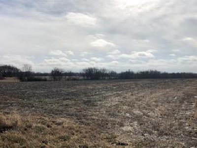 Miami County Residential Lots & Land For Sale: 271st Street