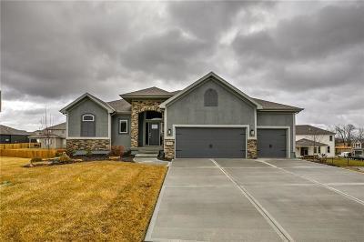 Lenexa Single Family Home For Sale: 8828 Houston Street