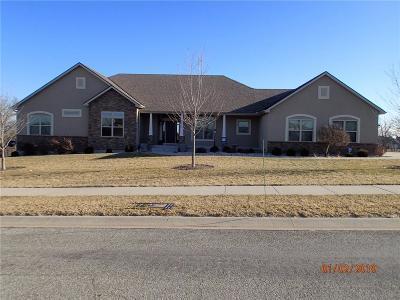 St Joseph Single Family Home For Sale: 4215 Greystone Drive