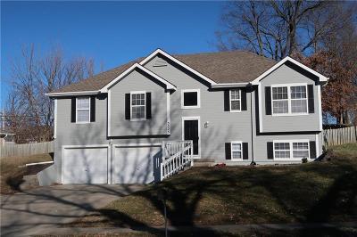 Kansas City Single Family Home For Sale: 3525 N Park Avenue