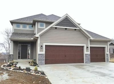Smithville Single Family Home Contingent: 206 Carriage Court