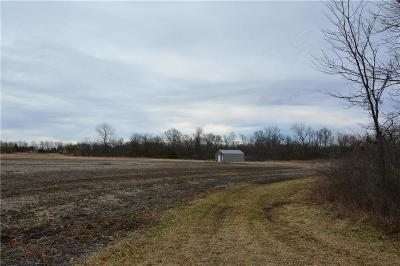 Cass County Residential Lots & Land For Sale: 335th Street