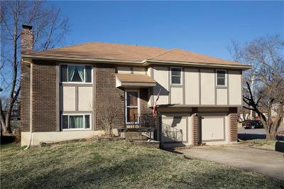 Edwardsville Single Family Home For Sale: 700 Trant Street