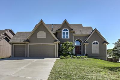 Kansas City Single Family Home For Sale: 3901 NE 95th Terrace