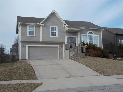 Gardner Single Family Home For Sale: 830 N Mulberry Street