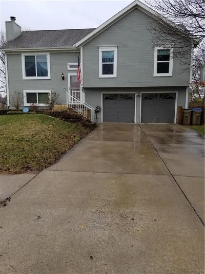 Cass County Single Family Home For Sale: 719 Meadow Lane