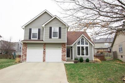 Shawnee Single Family Home For Sale: 5001 Payne Street