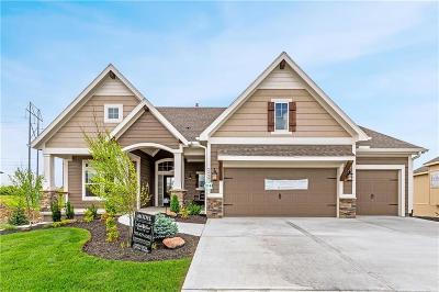 Johnson-KS County Single Family Home For Sale: 24981 W 114th Street