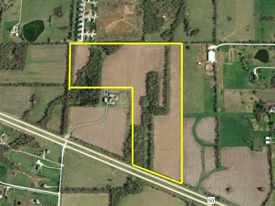 Residential Lots & Land For Sale: Ryan Road
