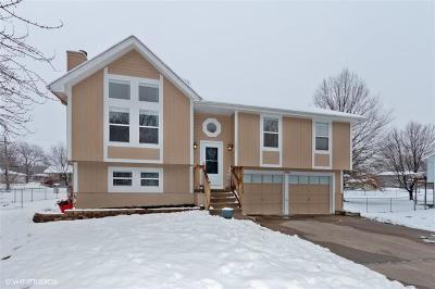 Kansas City Single Family Home For Sale: 10651 N Main Street