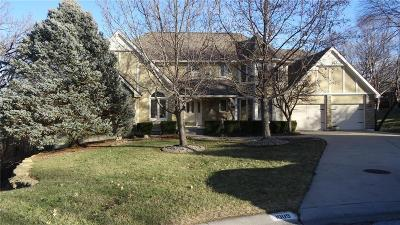 Lee's Summit MO Single Family Home For Sale: $380,000