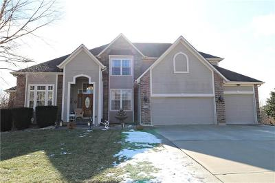 Lee's Summit MO Single Family Home Contingent: $425,000