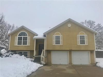 Pleasant Hill MO Single Family Home For Sale: $185,000
