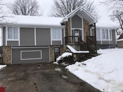Kansas City Single Family Home For Sale: 9839 View High Drive