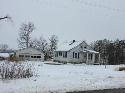 Single Family Home For Sale: 29155 W State Ee Highway