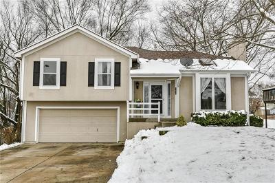 Kansas City MO Single Family Home For Sale: $199,000
