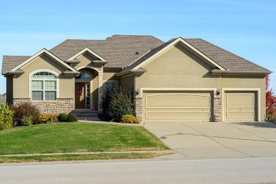 Kansas City MO Single Family Home For Sale: $370,000