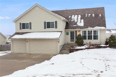 Clay County Single Family Home For Sale: 3901 NE 82nd Street