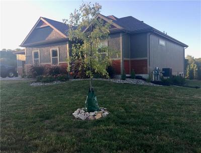 Single Family Home For Sale: 22350 W Cedar Street
