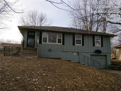 Clay County Single Family Home For Sale: 113 Sherri Lane