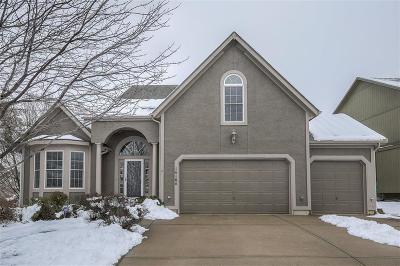 Olathe Single Family Home For Sale: 14164 W 138th Place