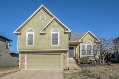 Lenexa Single Family Home For Sale: 21952 W 97th Terrace