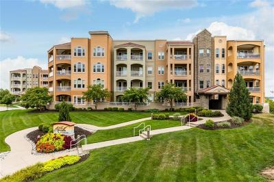 Cass County, Clay County, Platte County, Jackson County, Wyandotte County, Johnson-KS County, Leavenworth County Condo/Townhouse For Sale: 3810 N Mulberry #201 Drive #201