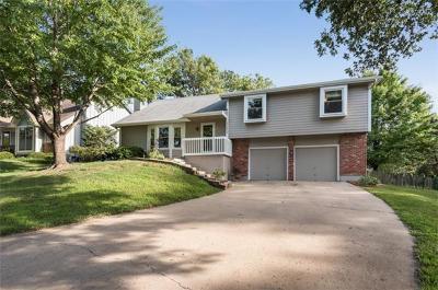 Lenexa KS Single Family Home For Sale: $250,000