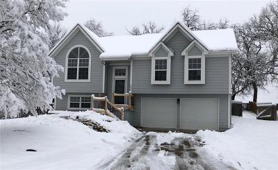 Lee's Summit MO Single Family Home For Sale: $210,000