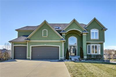 Lee's Summit MO Single Family Home For Sale: $450,000