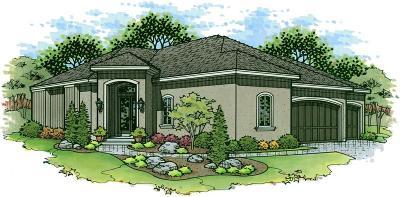 Lenexa Single Family Home For Sale: 8809 Freedom Street