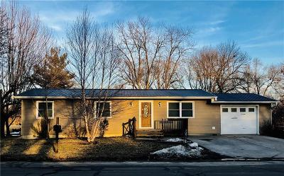 Grundy County Single Family Home For Sale: 2402 Park Lane Drive