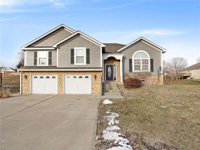 Leavenworth Single Family Home For Sale: 1204 Wildwood Street