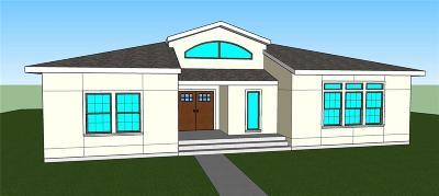Kansas City Single Family Home For Sale: 2100 Garfield Avenue