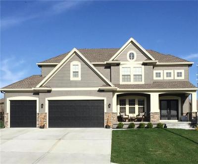 Kansas City Single Family Home For Sale: 8901 N Glenwood Avenue