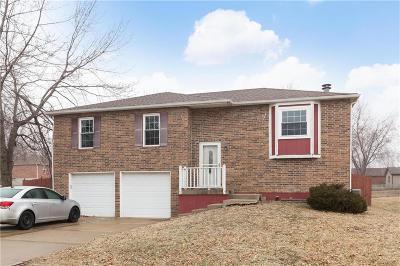 Lee's Summit Single Family Home For Sale: 820 NE Cambridge Drive