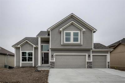 Raymore MO Single Family Home For Sale: $309,950