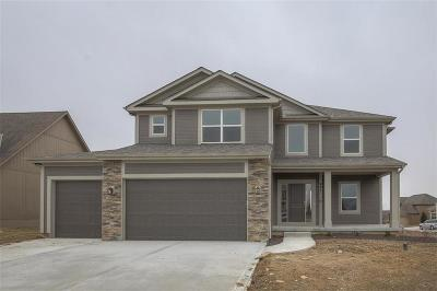 Raymore Single Family Home For Sale: 921 Coyote Drive