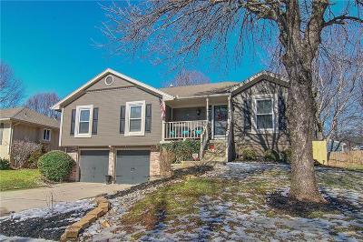 Blue Springs Single Family Home For Sale: 1101 SW Eastman Street