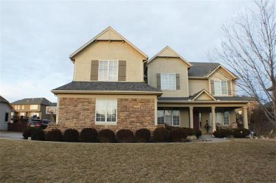 Lee's Summit MO Single Family Home For Sale: $425,000