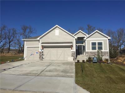 Johnson-KS County Single Family Home For Sale: 20590 W 113th Street