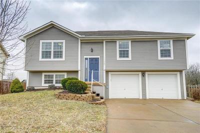 Kansas City Single Family Home For Sale: 11505 N Wallace Avenue
