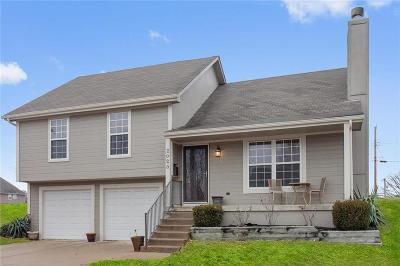 Kansas City Single Family Home For Sale: 2020 Park Avenue