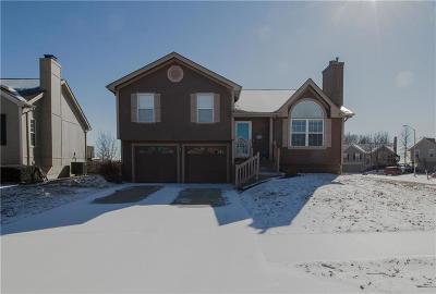 Kansas City Single Family Home Show For Backups: 11001 N Lewis Avenue